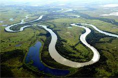 pantanal | Pantanal – a maior área alagada do mundo - Gigantes do Mundo