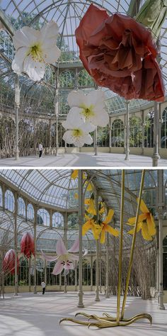 Interactive Exhibition, Writing Inspiration, Installation Art, Flowers, Plants, Wedding, Travel, Crystal Palace, Art