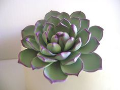 Hey, I found this really awesome Etsy listing at https://www.etsy.com/listing/236918116/succulent-cake-topper-clay-flower-cake