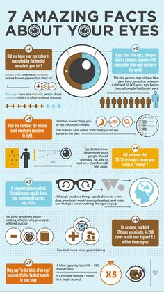 #Eyes are the windows to your soul. Know exclusive #facts about your eyes at:http://blog.gkboptical.com/7-amazing-facts-about-your-eyes-infographic/
