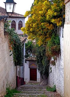 """ Albaicin, Granada / Spain by (Jocelyn Erskine-Kellie). """