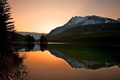 Two-Jack Reflection by Buck Shreck... http://1502983.talkfusion.com/es/