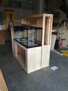 The Planted Tank Forum Aquarium Sump, Aquarium Fish Tank, Aquarium Ideas, Reef Aquarium, Wall Aquarium, Aquarium Systems, Live Aquarium, Fish Aquariums, Nature Aquarium