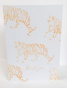 looking tigers thank you standing copy.jpg