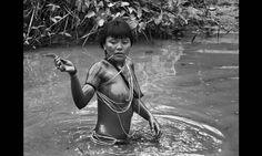 Mulher ianomâmi da aldeia Watoriki participa da pesca dcom o uso de timbó e outras plantas venenosas Foto: SebastiãoSalgado/Amazonas Images