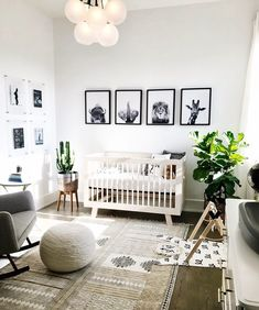 "901 Likes, 23 Comments - Home Decor (@innerdecor) on Instagram: ""#Nursery #Baby #Animals #WallFrames #Cozy #Crib #NeutralTones #SoftLight #Plants #Lamp #Rug #Chair"""