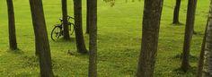 Santiago de Compostela, ene (EFE).- Los trabajadores del Parque Nacional das Illas Atlánticas emplearán en sus desplazamientos laborales la bicicleta eléctrica, para dismunir las emisiones de CO2 y el consumo energético.  La iniciativa es del Instituto Enerxético de Galicia (Inega), que han implantado un plan de movilidad con estos vehículos, como alternativa limpia y rápida en el parque.