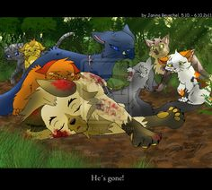 Into the Wild -Fall of the Lion poor cute Graypaw ;_;  Lionhearts death. Lionheart was an amazing character ._.