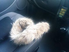 """Police in the UK have some Twitter fun after saving a distressed Ollie the """"otter"""" from the side of a road."""