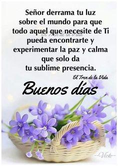 Good Morning In Spanish, Good Morning Funny, Good Morning Flowers, Good Morning Messages, Good Morning Good Night, Morning Prayers, Spanish Inspirational Quotes, Spanish Quotes, Good Day Quotes