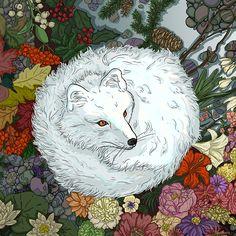 """Arctic Fox"""