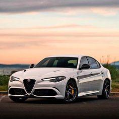 370 Alfa Romeo Ideas In 2021 Alfa Romeo Romeo Alfa Romeo Cars