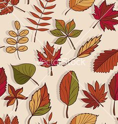 Autumn pattern pattern of autumn leaves red yellow vector by Little_cuckoo on VectorStock®