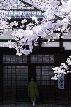 Japan Travel Inspiration - A monk at Komyo-ji temple, Kyoto