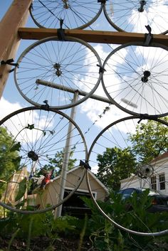 Bike Wheel Trellis . I would love to do this on the side of the house !!