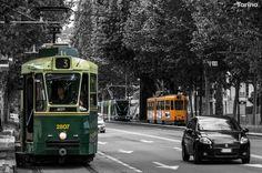 3 tram in corso regina Margherita