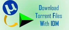 download+torrents+using+IDM
