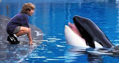 'Free Willy' Cast: Where Are They Now?