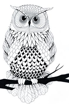 Black and white owl by ZakariasEatWorld.deviantart.com on @deviantART