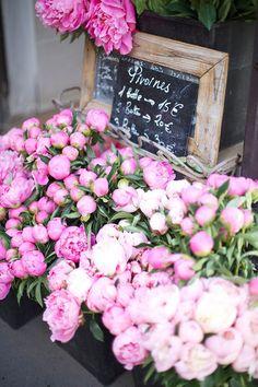 Les pivoines...mes fleurs préférées avec les renoncules ! gorgeous peonies in paris // by sweet sophie learmont