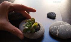 květináčkování...malé...radostné... Drobný květináček pro potěchu Vašeho oka, zen zahrádku, pěstění v malém, pěstění drobotin a Vašeho domečku.... Krásně se na něho kouká, příjemný na dotek, má nyní nejoblíbenější věcička, kam se člověk zakouká, když vlastně nekouká na nic=) Vhodné na drobné kvítky, kaktusy, sukulenty.... Můžete jej umístit na ... Zen, House Design, Cactus, Architecture Design, House Plans, Home Design, Design Homes