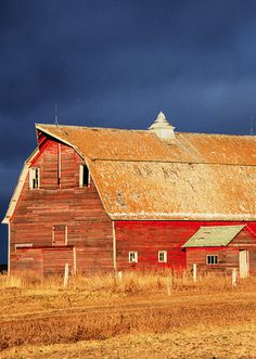 As European settlers crossed over to America, they brought with them the tradition of red barns. In the mid to late 1800s, as paints began to be produced with chemical pigments, red paint was the most inexpensive to buy. Red was the color of favor until whitewash became cheaper, at which point white barns began to spring up.