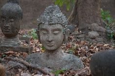 Mysterious ancient Buddha statues at Chiang Mai's Wat Umong. (New on www.thedropoutdiaries.com)