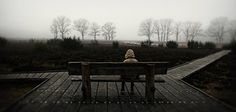 by Wim Schuurmans Portraits, World's Biggest, Photo Galleries, Sea, Park, Abstract, Gallery, Outdoor Decor, Photography