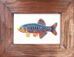 fish series Danio margaritatus  original drawing by charleydarbo, $149.00