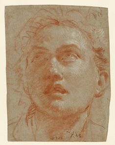 Head of a Man Looking Up (Getty Museum) Man Looking Up, Getty Museum, Chalk Drawings, White Chalk, Large Painting, Museum Collection, Old Master, Men Looks, Red And White