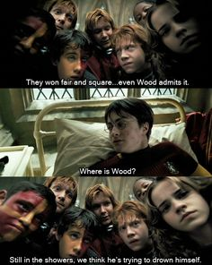 Harry Potter and the Prisoner of Azkaban....an small but hilarious scene in the book.  Wood was an intense die hard who had no sense of humor when it came to Quidditch.