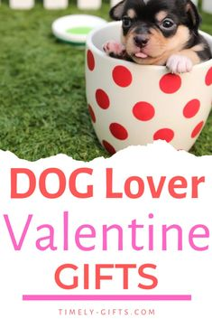 If you dog valentine boxes ideas, here are some great options that you could use as a Valentine's Day gift for dog lovers. Use these dog lover gift ideas to get something fun and meaningful. These dog gift ideas are fun and special for valentines. Valentines Date Ideas, Great Valentines Day Gifts, Dog Lover Gifts, Dog Gifts, Dog Lovers, Date Night Gifts, Super Cute Dogs, Dog Bows, Your Dog