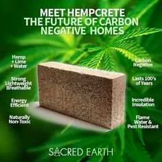 The New Green Building Trend is Bricks of Cannabis. Natural Building, Green Building, Building A House, Building Facade, Building Design, Gite Rural, Save Our Earth, Endocannabinoid System, Usa Tumblr