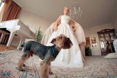 Photography by Liliya Gorlanova   #photo #wedding #love