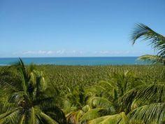 View of Gunga Beach