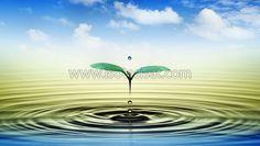 Su Kaçağının Tespitini Nasıl Yapmalısınız | İSO TESİSAT - www.isotesisat.com