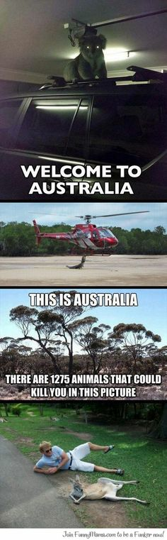 Australia... It is the Boss