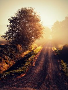 marketmeasuresaustralia: Country Roads…take me home. To the place I belong West Virginia, mountain momma Take me home, Country Roads. Ah, this is fill…View Post Beautiful World, Beautiful Places, Country Life, Country Roads, Country Walk, Back Road, Take Me Home, Belleza Natural, The Great Outdoors