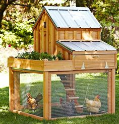 This chicken coop looks great! Insulate it and maybe with some kind of heating it should be warm enough for a Scandinavian winter