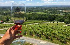 Vinhos, Washington
