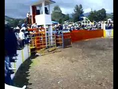 JARIPEO EN TEOPISCA CHIAPAS FERIA 2008 - YouTube