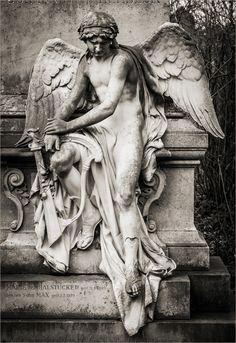 Engel komplett