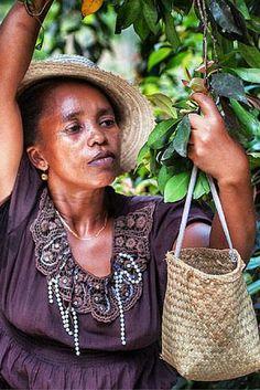 Madagaskar heeft een bloeiende kruidnagelhandel. Maar hoe krijgen de boeren een eerlijke prijs? https://dekleurvangeld.nl/bloeiende-kruidnagel-handel/
