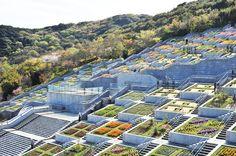 Awaji Yumebutai International Conference Center by Tadao Ando | DesignRulz
