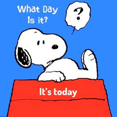 What Day Is It?🕊Welcome to Alicia J.'s Place. A place to enrich, equip and empower your life. Snoopy Love, Snoopy And Woodstock, Snoopy Pictures, Funny Pictures, Snoopy Tattoo, Snoopy Quotes, Peanuts Quotes, Weekday Quotes, Dachshund Art
