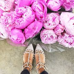 Pink peonies and Valentino's, looks like our kind of morning! #ModelCoHQ #pink