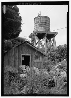 SHED AND WATER TOWER, FROM SOUTH - San Gregorio House, San Gregorio Road, San Gregorio, San Mateo County, CA
