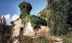 Bildergebnis für castagniccia korsika fotos