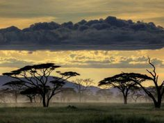 under the skies of Africa - Tanzania