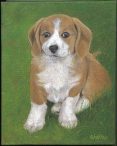 Pet Portraits Gallery by Award-winning Artist Shelley Lowell